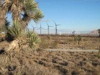 tehachapi-wind-parable
