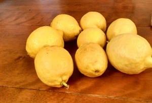 Lemons-and-Disciples